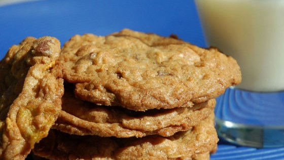 Photo of Dishpan Cookies II by Laura and Tammy