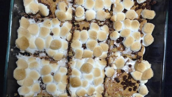Photo of S'mores Lasagna by Olivia Patrick