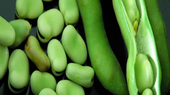 Photo of Meze Fava Beans by Pascale Huntsinger