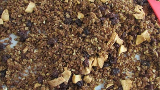 Photo of Apple Pie Granola by Kears
