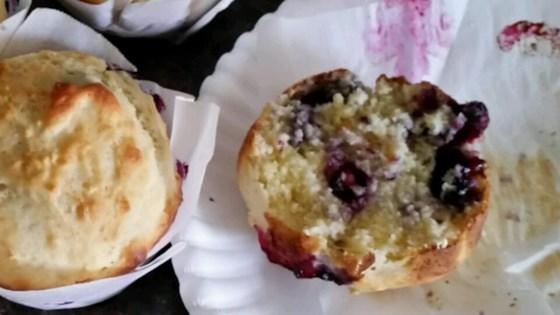 Photo of Breakfast Muffins by Carol Yarde