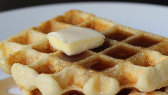 Photo of Waffles I by OneShyOfABunch