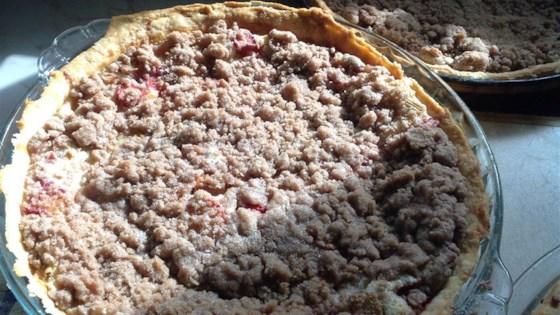 Photo of Sour Cream Rhubarb Pie by David S. Novak