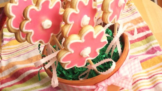 Photo of Cut-Out Cookies in a Flower Pot by Laura