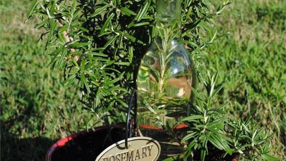 Photo of Herbed Vinegars by Erica Sweet