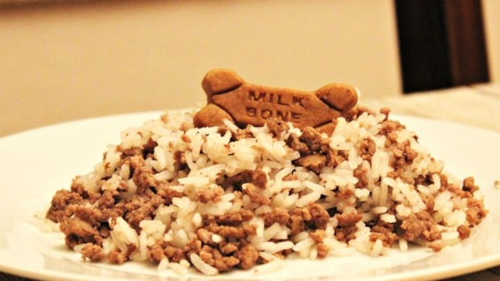 Pampered pooch rice and lamb casserole recipe allrecipes photo of pampered pooch rice and lamb casserole by kcfoxy forumfinder Choice Image