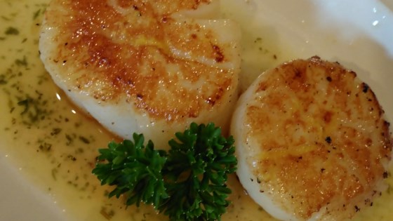 Simply Seared Scallops Recipe