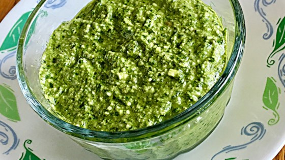 Photo of Spinach Walnut Pesto by Shan