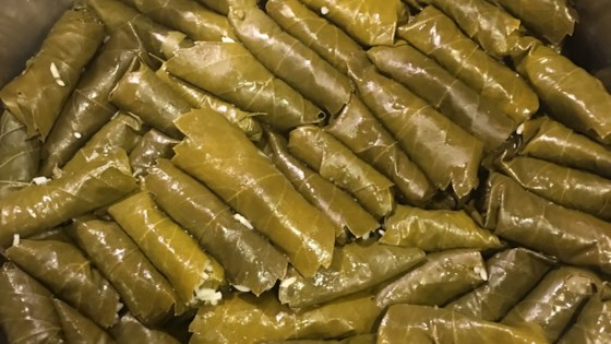 my own famous stuffed grape leaves review by leila m