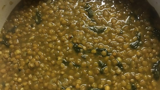 Photo of Syrian-Style Lentil and Spinach Soup by AzzaJaba