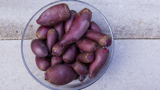 Photo of Raw Fermented Beets by Magpie