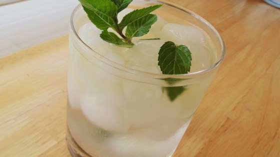 Photo of Simple Mint Julep by TerryWilson