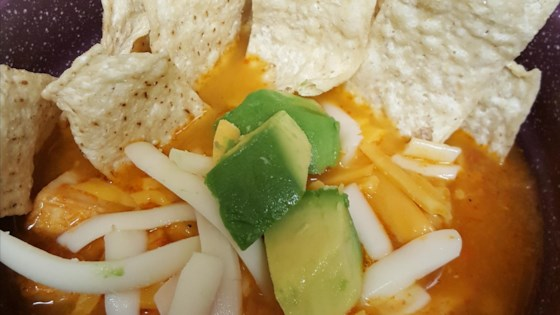Photo of Pressure Cooker Tortilla Soup by Dennis Errichiello