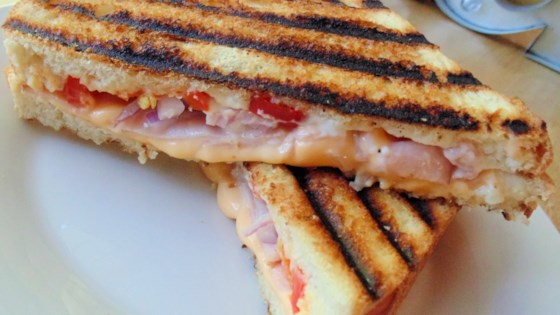 Photo of Basic Grilled Panini by ERRINL