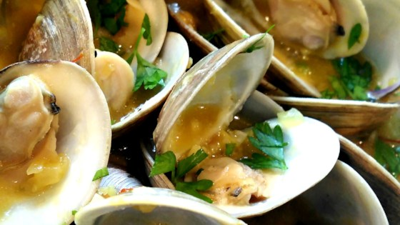 Photo of Sailor Clams by lorena