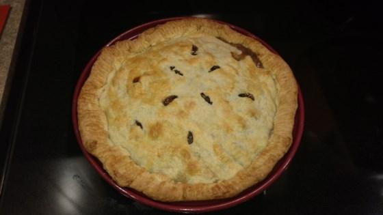 Photo of Venison Pot Pie by nick_atnite