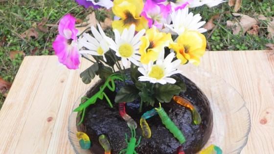 Topsoil Garden Jell-O®