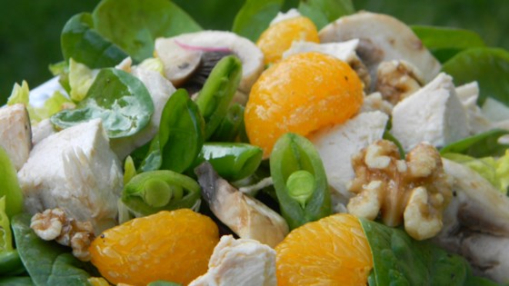 Photo of Turkey and Citrus Salad by kdonofrio