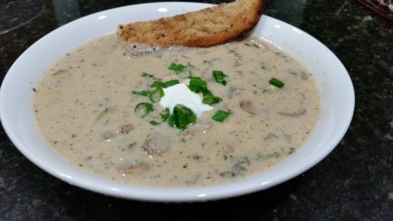 Mushroom and Chicken with Sour Cream Soup