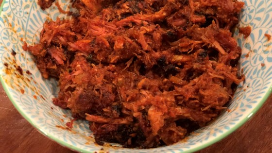 Photo of Homemade Pulled Pork Ragu in an Instant Pot®  by Fioa