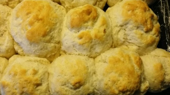 (Big as a) Cathead Biscuits