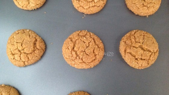 Photo of Fresh Ginger Cookies by Noel Lenhart