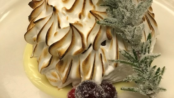 Photo of Baked Alaska Dessert by Carol
