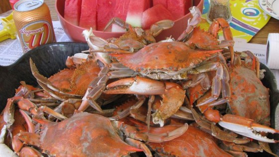 Photo of Steamed Blue Crabs by Steve A