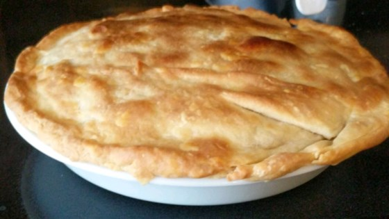Photo of Left-Over Turkey Pot Pie by michelle_cows