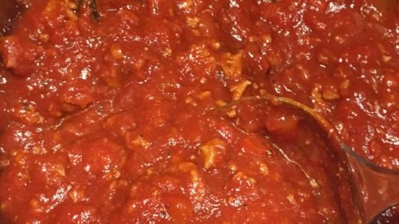 Photo of Amazing Ground Turkey Tomato Sauce by dinkytink