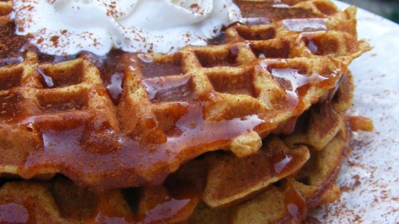 Photo of Pumpkin Waffles with Apple Cider Syrup by JEANETTE B