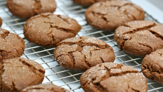 Photo of Melissa's Grandma's Ginger Lace Cookies by Vista Verde Ranch