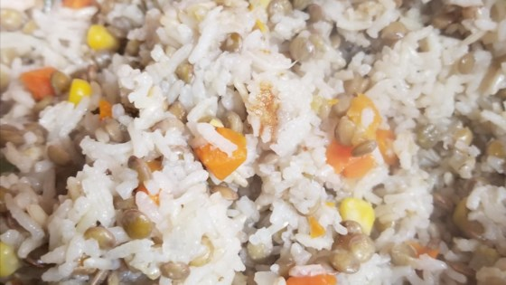 Photo of Rice and Lentils from a Rice Cooker by Fatcatpat
