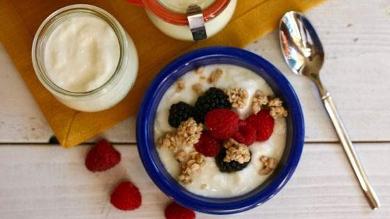 Photo of Traditional Homemade Yogurt by ChefJackie
