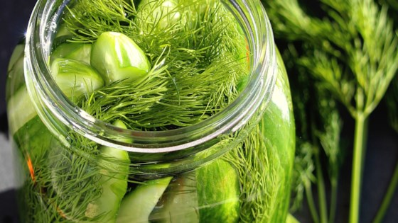 Fermented Kosher-Style Dill Pickles