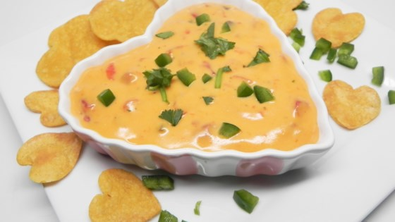 Photo of Easy Mexi-Cheese Dip by kyalamode