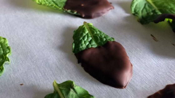 Chocolate-Covered Mint Leaves