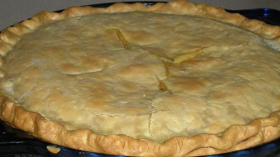 turkey pot pie iii review by jenelle d