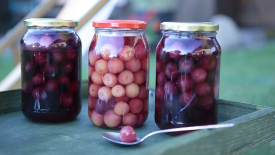 Photo of Preserved Cherries by Lenam