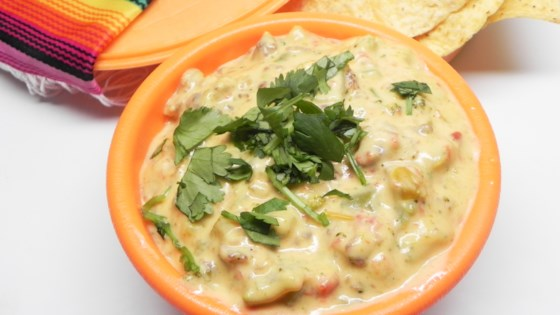 Photo of Mexican Cheese Dip by Trina Jones