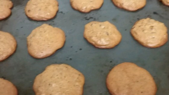 Photo of Chocolate Chip Honey Cookies by mommietotwo