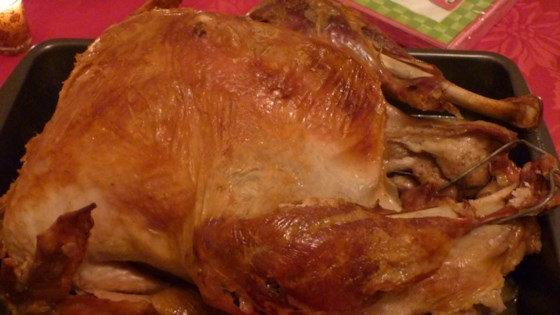 Photo of Turkey in a Bag by DYCLARK