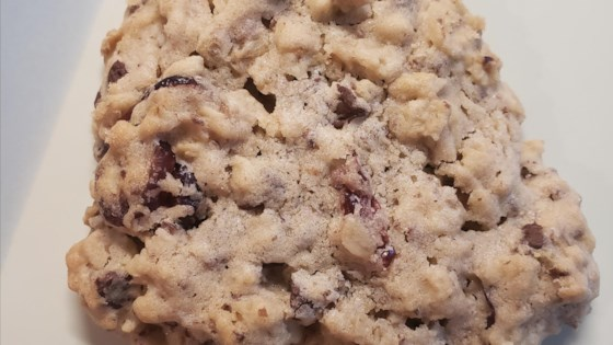 Photo of Lactation Cookies with Chocolate and Cranberries  by Tausha Jones