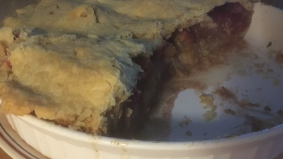 Photo of Apple and Nectarine Pie by Amy D. H.
