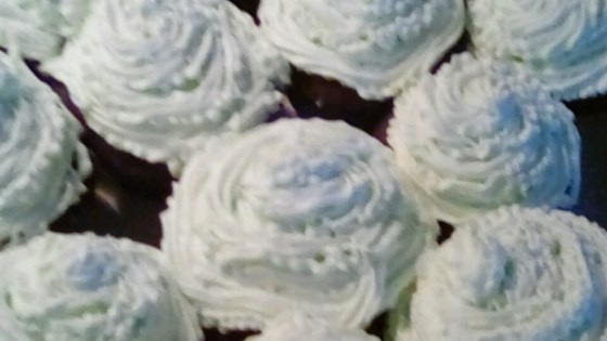 Photo of Mint Chocolate Cupcakes by xoxoemilyrae