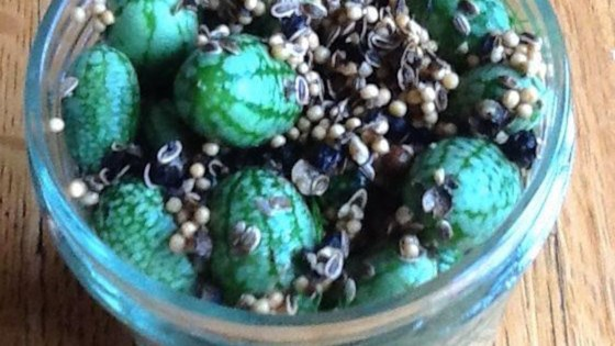 Photo of Cucamelon Pickles by nch