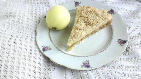 Photo of Warm Apple Buttermilk Custard Pie by NEONWILLIE