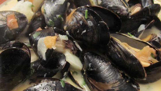 Photo of Steamed Mussels with Fennel, Tomatoes, Ouzo, and Cream by DJFoodie