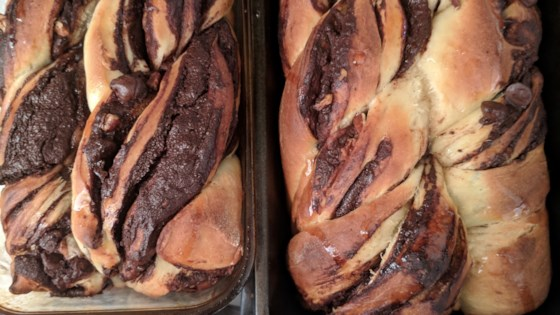 Photo of Chocolate Babka by Lilia