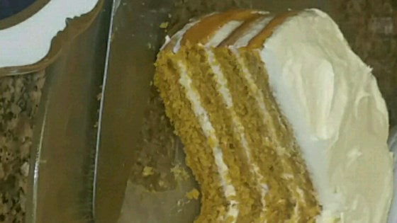 Photo of Quick Pumpkin Cake by claire
